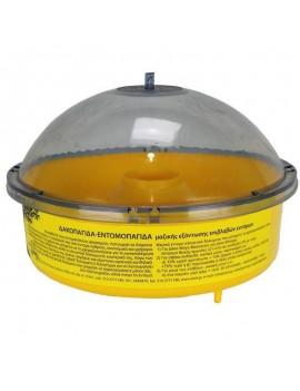 Capcana plastic pentru viespi