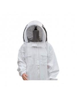 Jacheta apicola ASTRO