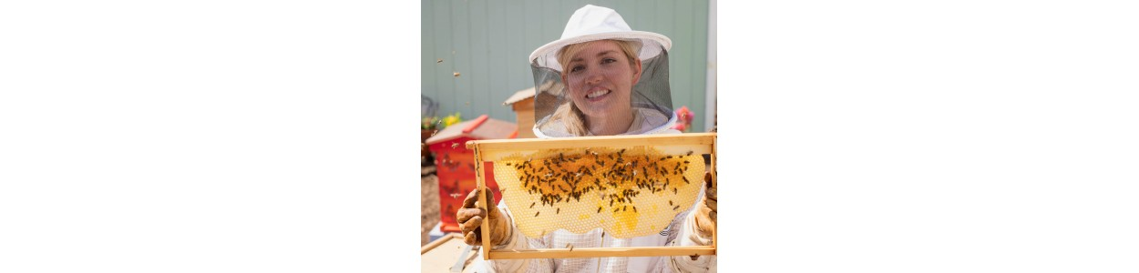 Masti apicole