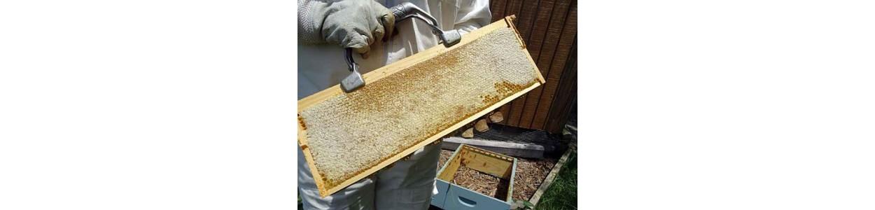 Masini de descapacit pentru extractia mierii